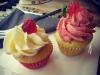 Savory Frankfurt Cupcakes