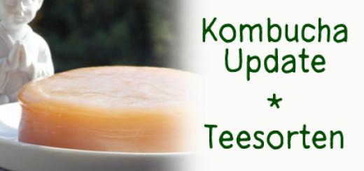 Kombucha Tee Sorten Rezept