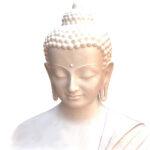 Geführte Metta Meditation Skript
