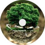 Baum des Lebens geführte Meditation