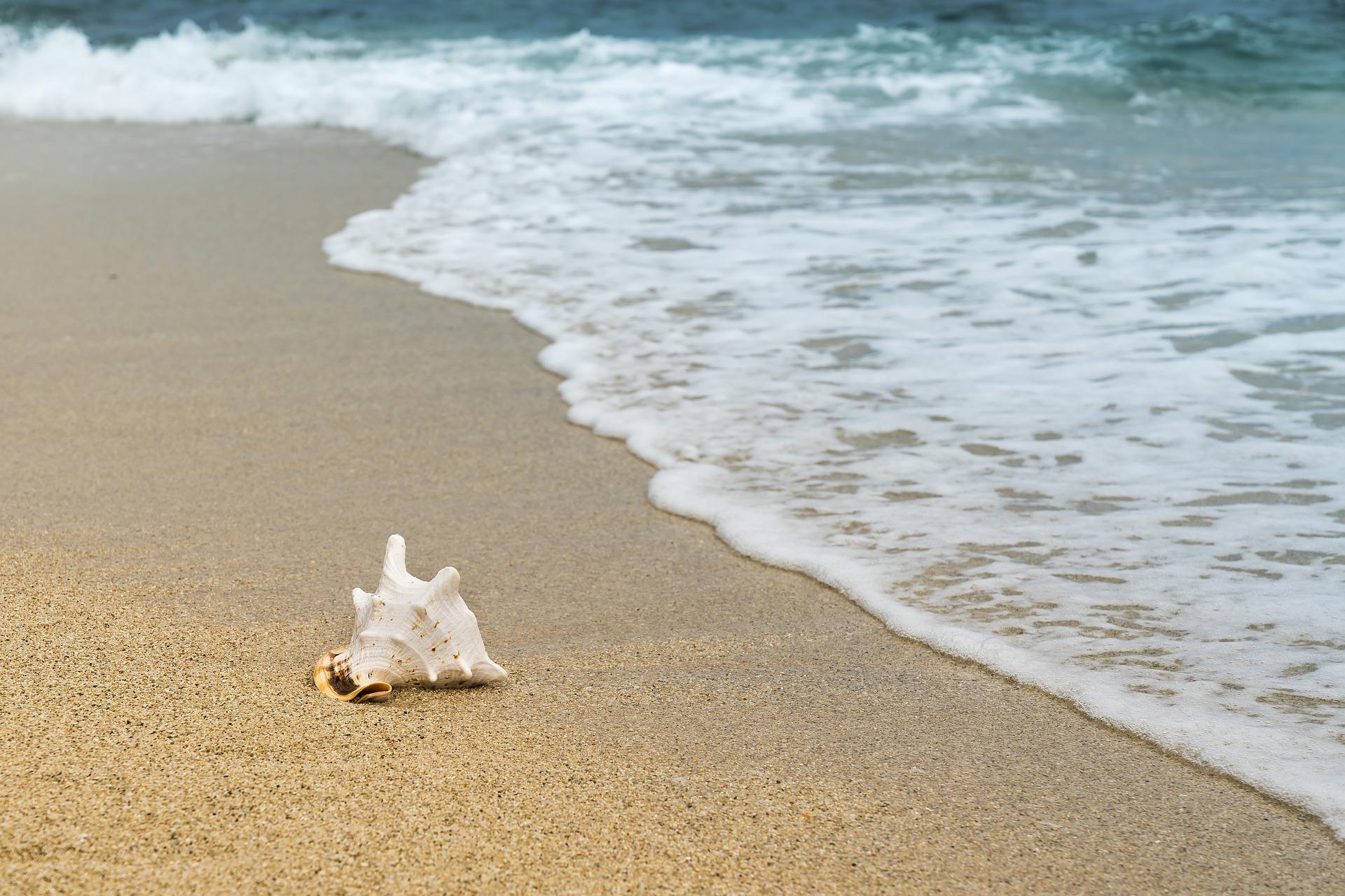 Meditationstext Skript Tag am Meer Strand