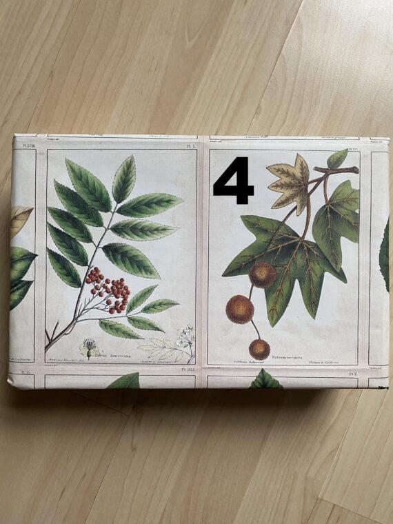 Mystery Boxen